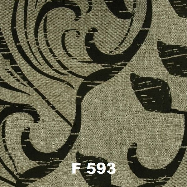 F 593